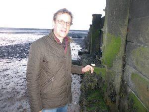 Martin,SeaWall